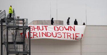Aktivisten brachten auf dem Dach des Tönnies-Hauptstandorts in Rheda-Wiedenbrück ein Transparent mit der Aufschrift «Shut Down Tierindustrie» an. Foto: Guido Kirchner/dpa