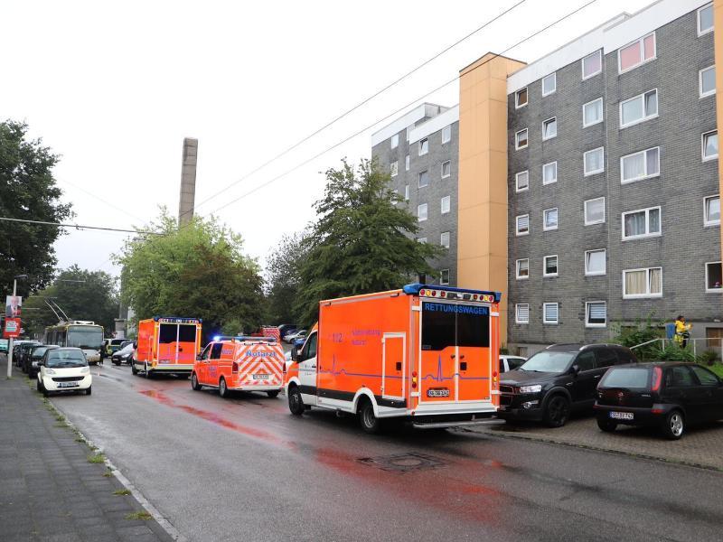 In Solingen sind in einem Haus mehrere tote Kinder gefunden worden. Foto: Gianni Gattus/dpa