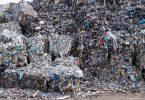 In Ballen gepresster Verpackungsmüll: Eine neue Studie ergab, dass die von Menschen produzierte Biomasse in diesem Jahr neue Rekordwerte errreicht. Foto: Bernd von Jutrczenka/dpa