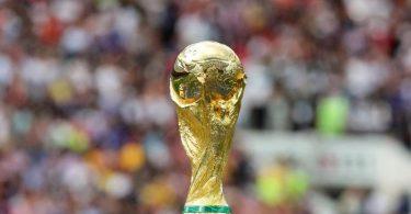 Der Weg zum Weltmeister-Pokal ist weit - am heutigen Montag beginnt er mit der WM-Quali-Auslosung. Foto: Christian Charisius/dpa