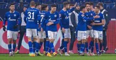 Die Schalker Spieler bejubeln das Tor zum 1:0 gegen die TSG1899 Hoffenheim. Foto: Guido Kirchner/dpa
