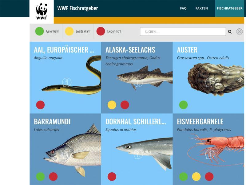 Den WWF-Fischratgeber gibt es unter anderem als App und in einer Kurzfassung im Scheckkartenformat für die Einkaufstasche. Foto: fischratgeber.wwf.de/dpa-tmn