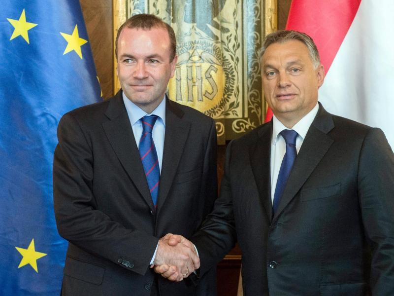 'Ich informiere Sie hiermit, dass die Fidesz-Europaabgeordneten ihre Mitgliedschaft in der EVP-Fraktion beenden.' Viktor Orban (r.) und der EVP-Vorsitzende Manfred Weber. Foto: Szilard Koszticsak/MTI/dpa