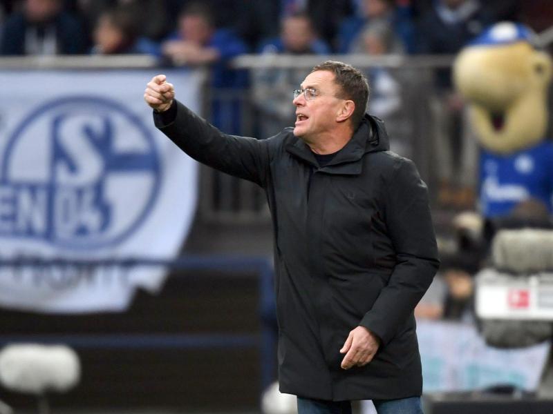 Ralf Rangnick arbeitete bereits von 2004 bis 2005 sowie im Jahr 2011 als Trainer beim FC Schalke 04. Foto: Ina Fassbender/dpa