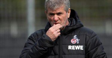 Friedhelm Funkel, der neue Trainer des 1. FC Köln. Foto: Federico Gambarini/dpa