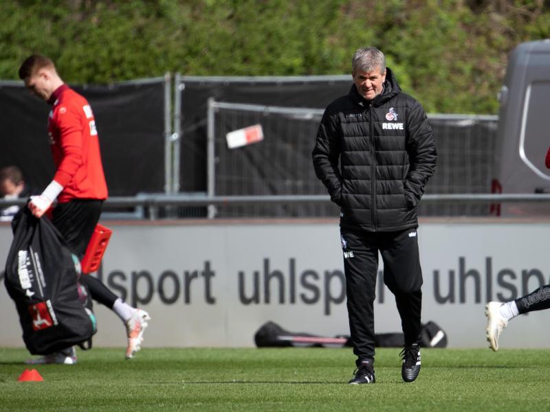 Wird erstmals wieder auf der Trainerbank sitzen: Friedhelm Funkel (M) leitet das Training des 1. FC Köln. Foto: Federico Gambarini/dpa