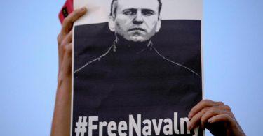 Bei einer Demonstration gegen die Inhaftierung des russischen Oppositionsführers wird ein Schild mit der Aufschrift «Free Nawalny» hochgehalten. Foto: Oded Balilty/AP/dpa
