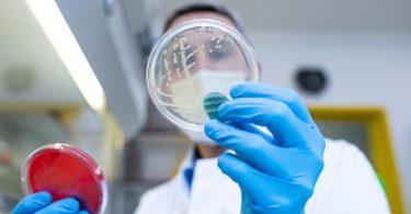 Prof. Alexander Mellmann leitet das Nationale Konsiliarlabor für das HUS-Syndrom und pflegt eine der weltweit größten Sammlungen an EHEC-Erregerstämmen. Foto: Guido Kirchner/dpa