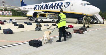 Belarussische Behörden hatten die Ryanair-Maschine zur Landung gebracht. Foto: Uncredited/ONLINER.BY/AP/dpa