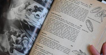 «Wir kochen gut» gehört wie das «Kochbuch» zu den auch als Reprint immer wieder neu aufgelegten DDR Kochbüchern. Foto: Bernd Settnik/dpa