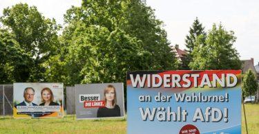Wahlplakate von CDU, der Linken und AfD werben um Stimmen. Foto: Jan Woitas/dpa