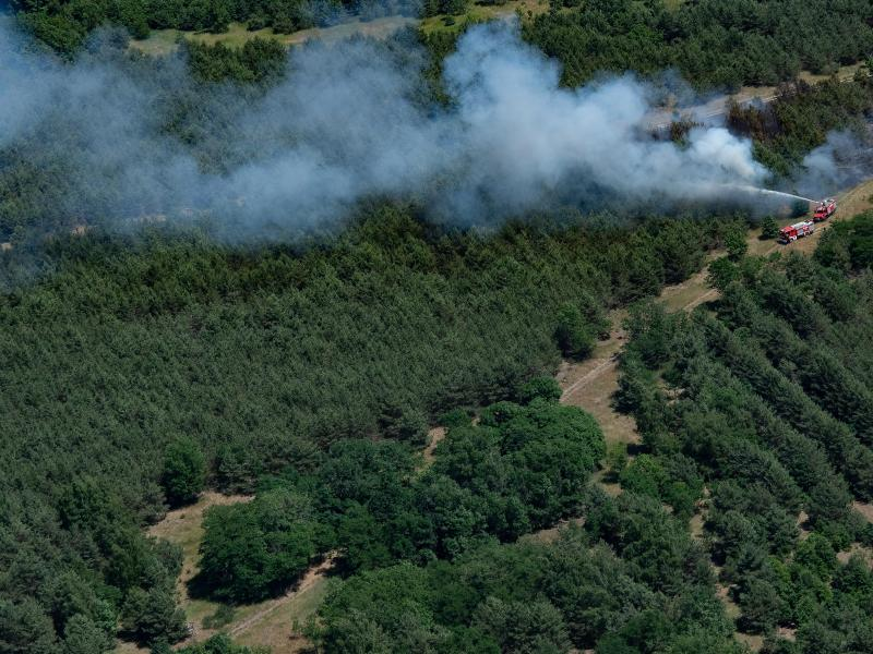 In einem Waldstück bei Jüterbog (Brandenburg) bekämpfen Feuerwehrleute einen Waldbrand. Foto: Paul Zinken/dpa-Zentralbild/dpa