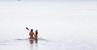 Eine Frau paddelt mit ihrem Hund auf einem Windsurfbrett auf der Ostsee vor der Insel Fehmarn. Foto: Frank Molter/dpa