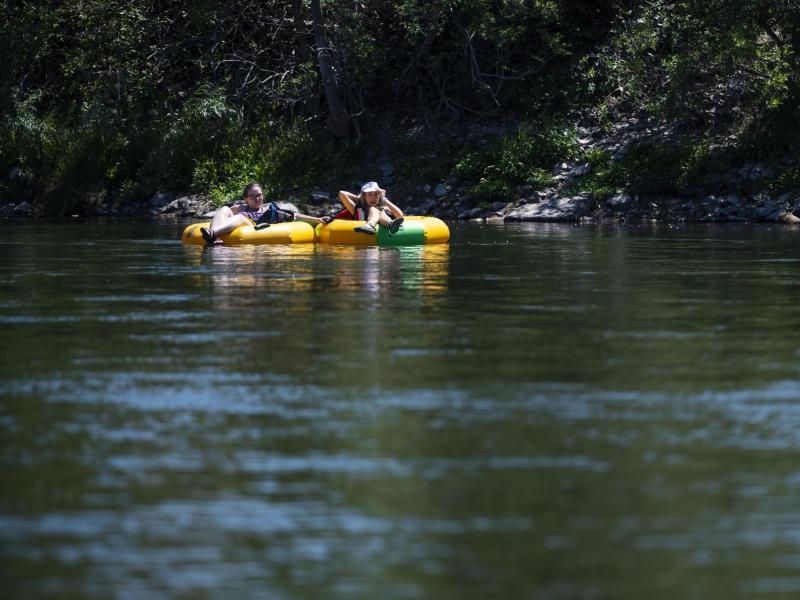 Auf der Suche nach Abkühlung im Clark Fork River in Missoula (US-Bundesstaat Montana). Foto: Tommy Martino/AP/dpa