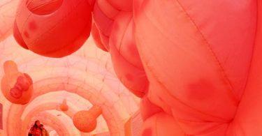 So wie in diesem Modell können Polypen im Darm aussehen - aus ihnen kann sich Krebs entwickeln. Foto: Ralf Hirschberger/dpa-Zentralbild/dpa-tmn