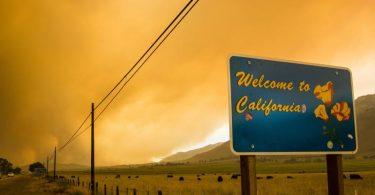 Die Waldbrandsaison im Westen Nordamerikas wird voraussichtlich noch Monate dauern, und schon jetzt wüten die Flammen auf ungewöhnlich großen Flächen. Foto: Ty O'neil/SOPA Images via ZUMA Press Wire/dpa