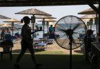 Eine Kellnerin serviert Erfrischungen in einer Strandbar im Dorf Lagonissi. Eine seit Anfang der Woche andauernde Hitzewelle in Griechenland erreicht ihren Höhepunkt. Foto: Yorgos Karahalis/AP/dpa