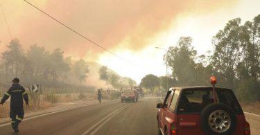 Feuerwehrleute bekämpfen einen Waldbrand in der Nähe des Dorfes Lampiri, westlich von Patras. Foto: Andreas Alexopoulos/AP/dpa