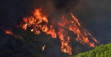 Ein Waldbrand wütet unweit des Ortes Platanos, unweit des antiken Olympia. Foto: Giannis Spyrounis/ilialive.gr/AP/dpa