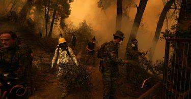 Helfer bekämpfen in der Nähe des Dorfes Pefki auf Euböa den Brand eines Waldstückes. Foto: Petros Karadjias/AP/dpa