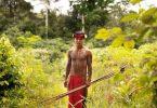 Ein junger Waiāpi-Jäger in Brasilien hält Pfeil und Bogen in seiner Hand. Foto: Target/Nehberg/dpa