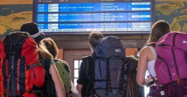 Eine Anzeigetafel am Stralsunder Hauptbahnhof zeigt die Zugausfälle an. Foto: Stefan Sauer/dpa