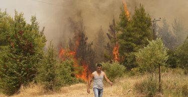 Die Insel Euböa wurde besonders hart von den Feuern heimgesucht. Insgesamt fielen in Griechenland bislang 90.000 Hektar denFlammen zumOpfer. Foto: Petros Karadjias/AP/dpa