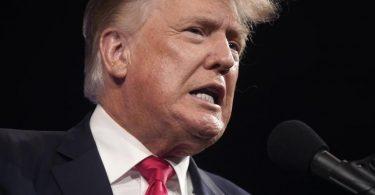 Donald Trump versucht sich als Box-Kommentator. Foto: Lm Otero/AP/dpa