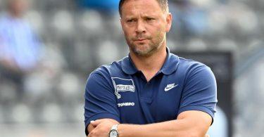 Chefcoach Pal Dardai braucht bei Hertha BSC den nächsten Sieg. Foto: Soeren Stache/dpa-Zentralbild/dpa