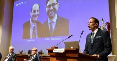 Thomas Perlmann, Sekretär der Nobelversammlung und des Nobelkomitees (r.), verkündet die Gewinner des Nobelpreises für Physiologie oder Medizin 2021. Foto: Jessica Gow/Tt/TT NEWS AGENCY via AP/dpa