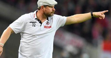 Die Schiebermütze von Kölns Trainer Steffen Baumgart wurde zum Verkaufsschlager. Foto: Marius Becker/dpa