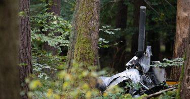 Trümmerteile eines Hubschraubers vom Typ Robinson R44 liegen in einem Wald in Buchen in Baden-Württemberg. Foto: Sebastian Gollnow/dpa