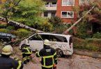 """Im Hamburger Stadtteil Ohlsdorf hat """"Ignatz"""" Bäume entwurzelt. Die Feuerwehr ist im Einsatz. Foto: Steven Hutchings/TNN/dpa"""